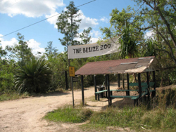 Belize Travel Amp Tourist Information