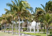 Freeport, Grand Bahama