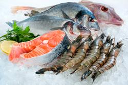 Galveston seafood restaurants